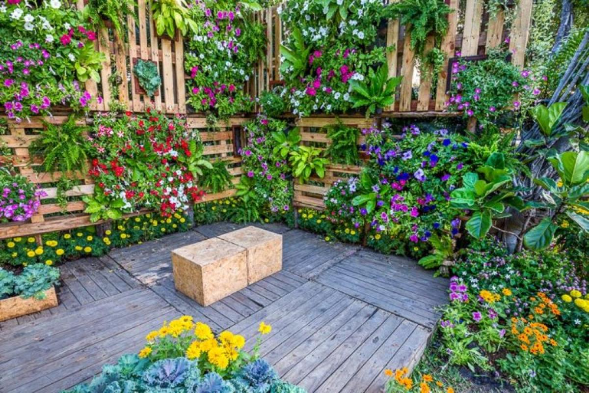 Кокетна ботаническа градина у дома
