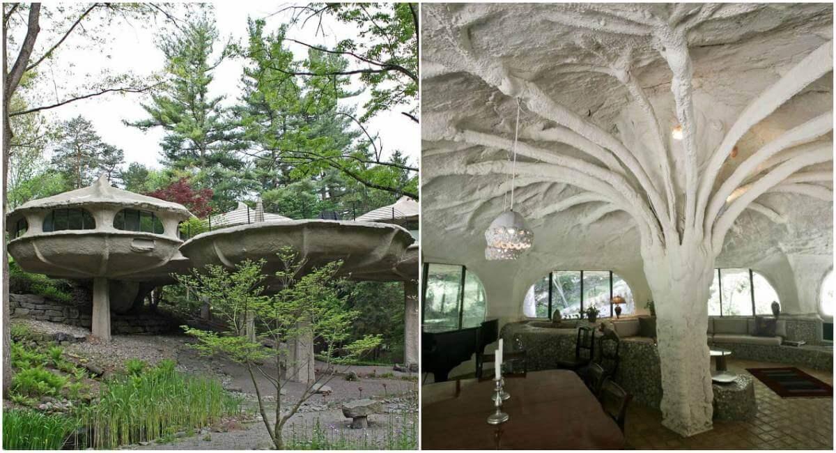 Приказна къща под формата на гъбка