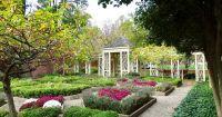 Перфектната лятна градина в 4 лесни стъпки