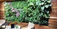 Направи си сам: вертикална градина за цветя, подправки или зеленчуци