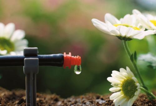 Капково напояване: По-добрата система за поливане?