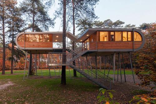 Проект за къща на дърво в Белгия