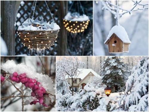 Преоткрийте зимното великолепие във вашата градина