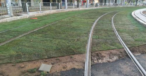 Зелените релси в София покафеняха само за дни
