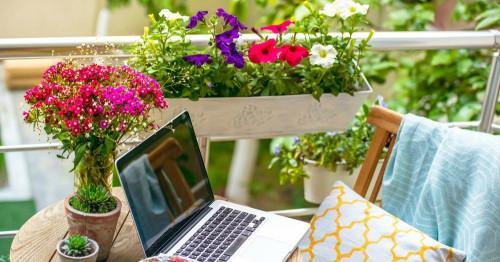 Красиви цветя за всяка тераса