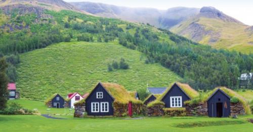 Зелен покрив за по-добра енергийна ефективност и естетика