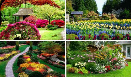 Как да засадите красива градина - съвети за начинаещи