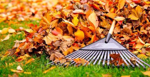 4 съвета за почистване на градината в края на лятото