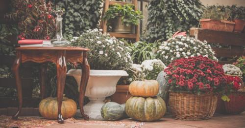 5 идеи за есенна декорация