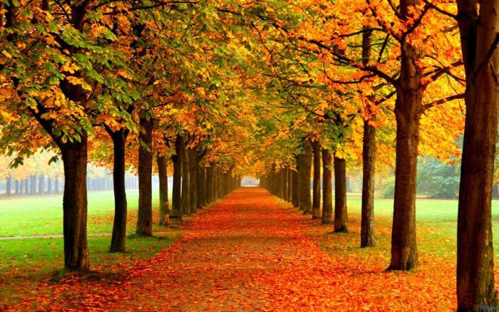 Климатични условия през есента