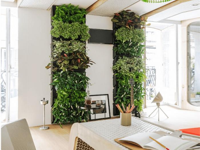 Вертикална градина в спалнята