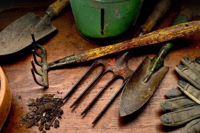 Кои инструменти за градина да се вземат на първо време