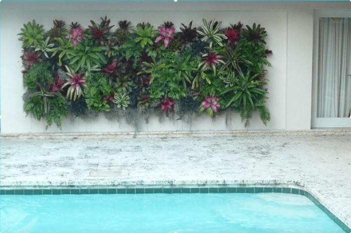 Жива стена около басейна
