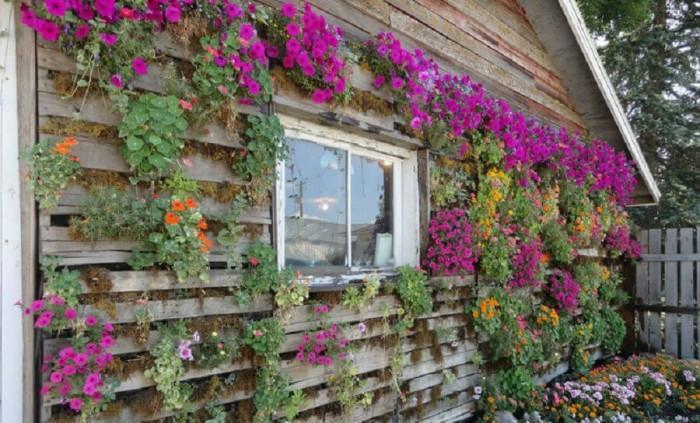 Стена от цветя и палети
