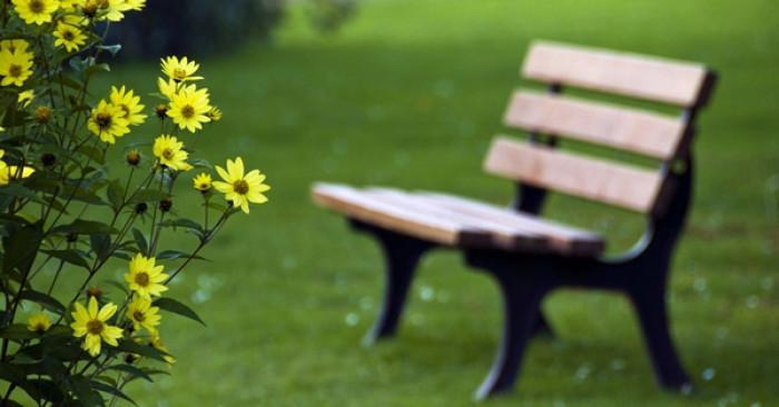 Защо в парковете и градските градини има пейки, а не столове?