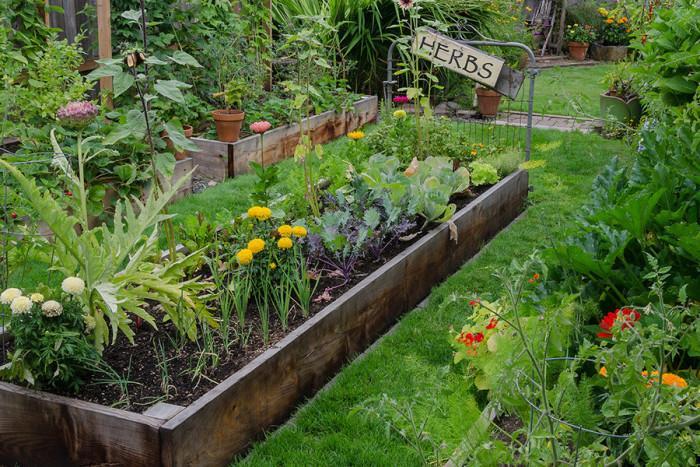 Дизайн на малка градина на открито