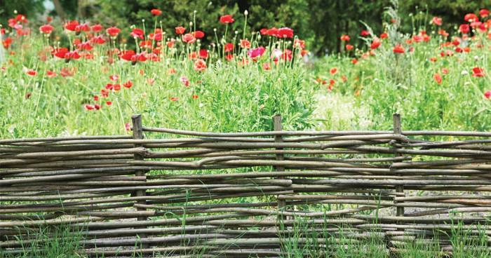 Вместо ограда – плет от клони