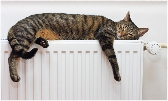 Митове за по-топъл дом
