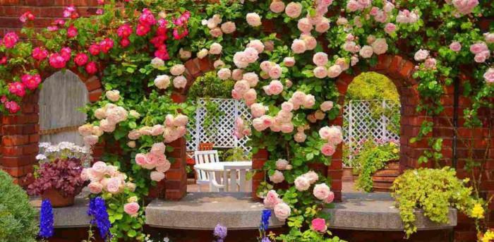 Лесни и ефектни идеи за декорация на градината
