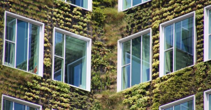 Външни вертикални градини и стени