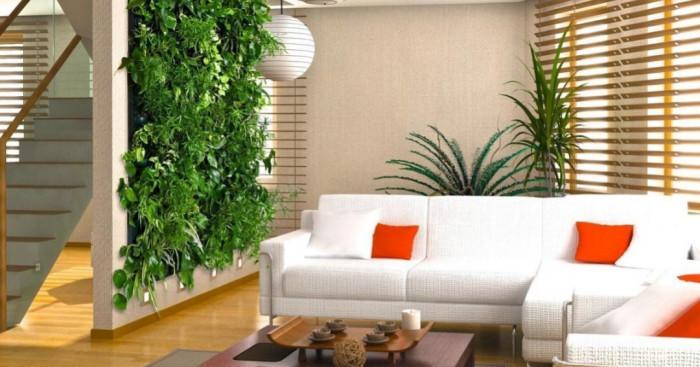 Изберете правилно място за вертикална градина