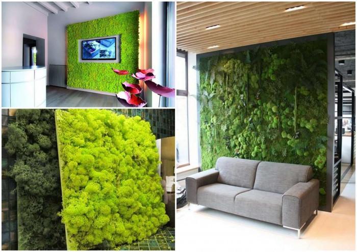 Да раззеленим дневната с декоративен жив мъх