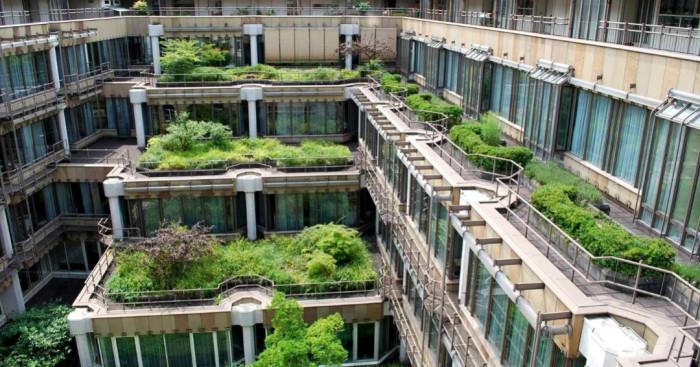 Зелен покрив за по-разчупен ландшафтен дизайн