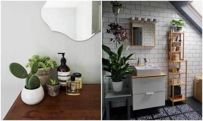 Добавете растения в банята си