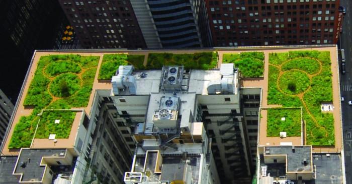 Зеления покрив в града