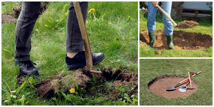 2. Изкопайте дупката