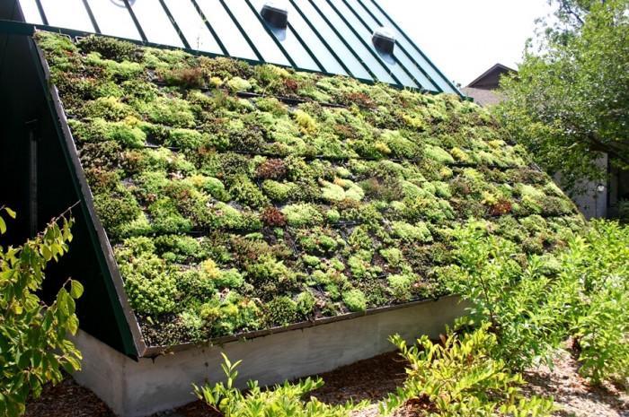 Зелени покриви за собствениците на къщи