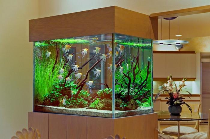 Видове контейнери за аквариум