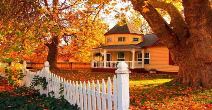 Полагане на грижи за градината през есента