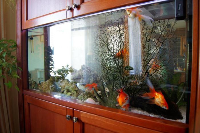 Декоративните елементи оформят стила на аквариума