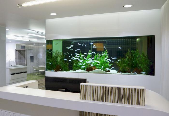 Апаратура за поддръжка на аквариума – без нея не може