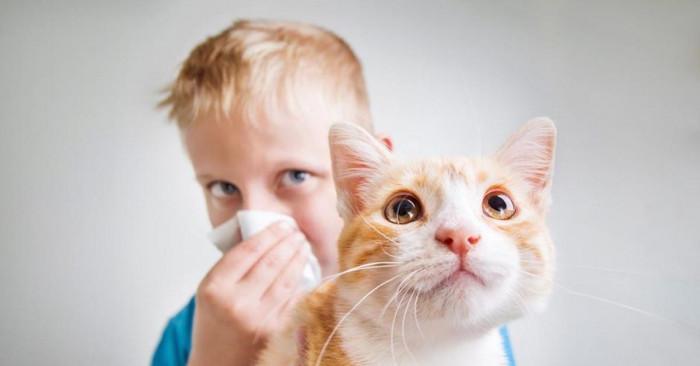 Климат и алергични вещества - рискове за здравето