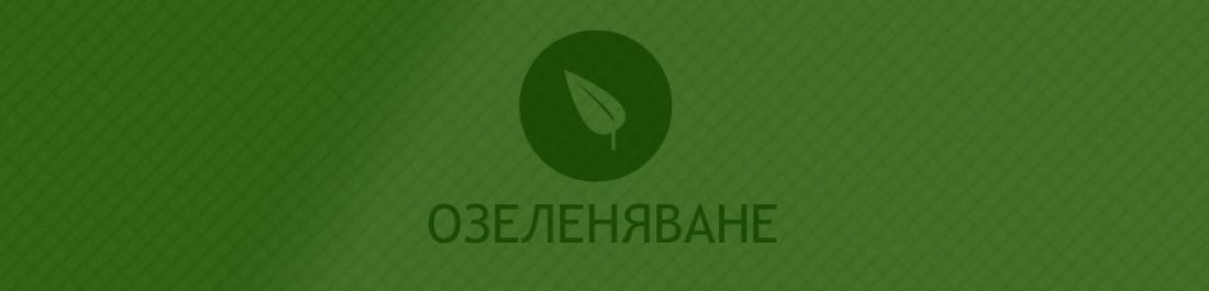 Основна снимка за категория Озеленяване