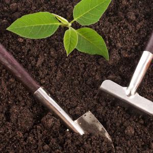 Подгответе почвата за зимата