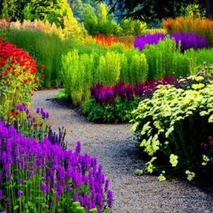 Изберете дизайн за вашата цветна градина