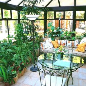 Полагайте специални грижи за растенията в градината