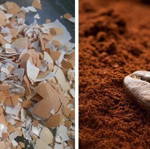 Кафеени зърна