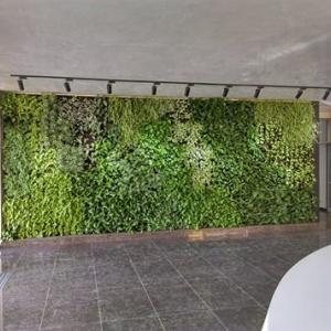 Вертикална градина в София