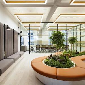 Зеленина в дизайна на офиса – екологично и стилно решение