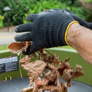 Чистотата в градината през есента е важна