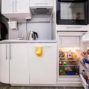 Критерии за избор на малък хладилник