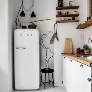 Мини хладилници: как да изберем най-добрия модел?