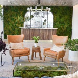 Вертикална градина за зелено настроение през цялата година