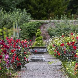 Създайте градина, която се поддържа лесно